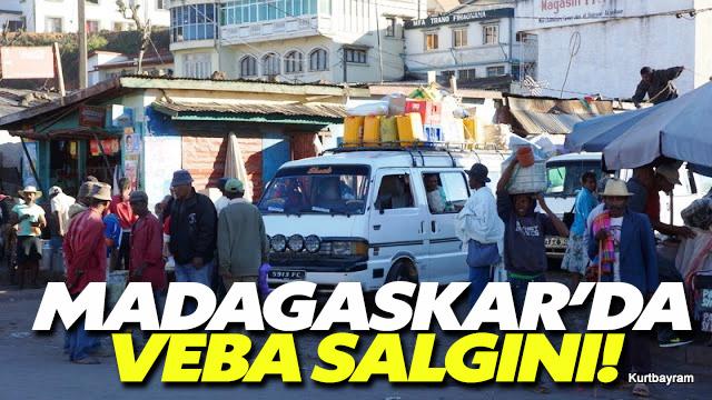 Madagaskar'da veba salgını 42 kişiyi öldürdü