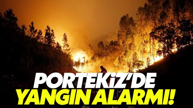 Portekiz'de yangın can aldı