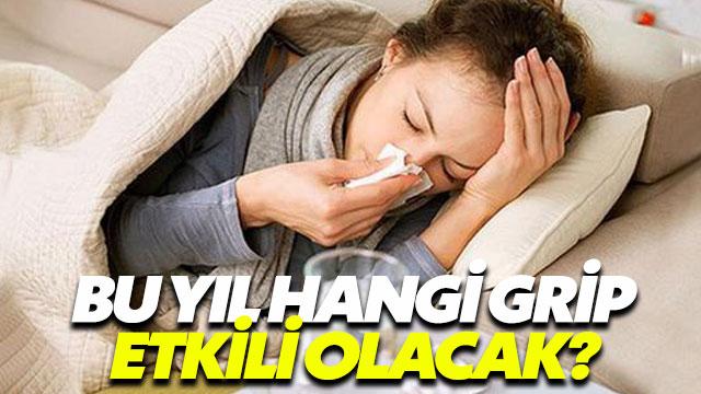 Bu yıl hangi grip virüsleri etkili olacak?