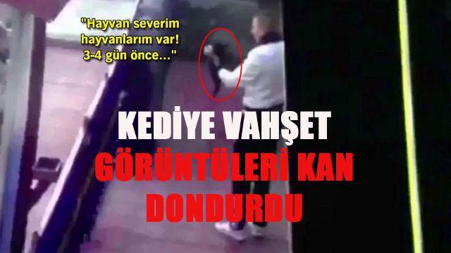 Erzincan'da kediye vahşet yakalanan asker serbest bırakıldı