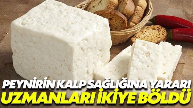 Peynirin kalp sağlığına yararı uzmanları ikiye böldü