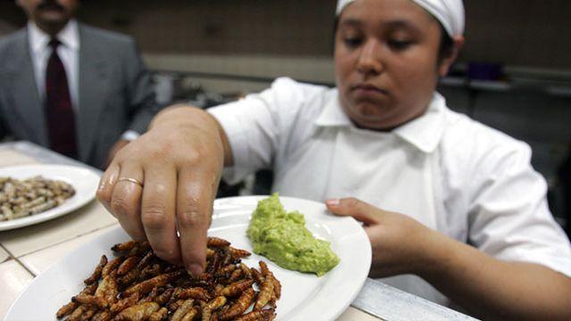 Böcek Yenilen Ülkeler Ve Beslenme Alışkanlıkları Nelerdir?