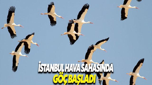 İstanbul hava sahasında göç alarmı