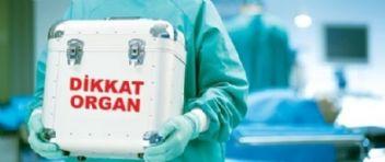 Bağış için çabalar yetmiyor, 25 bin kişi organ bekliyor!..