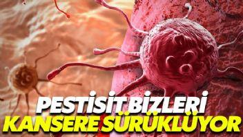 Ufak Tefek Cinayetler dizisinin ele aldığı pestisit bizleri kansere sürüklüyor