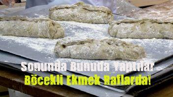 Finlandiya'da böcekli ekmek satışa sunuldu!