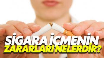 Sigara İçmenin Zararları Nelerdir?