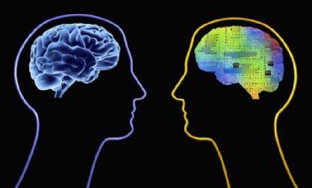 Beyin Büyüklüğü İle Zeka Arasında Nasıl Bir Bağlantı Vardır?