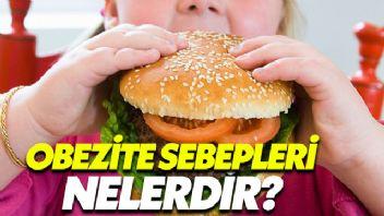 Obezite Sebepleri Nelerdir?