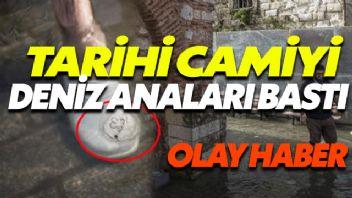 Tarihi Camiyi Deniz Anaları Bastı