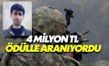 PKK'nın sözde eyalet sorumlusu Mardin'de ölü ele geçirildi