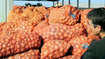 Soğanı vatandaşa 10 liraya yedirecekler