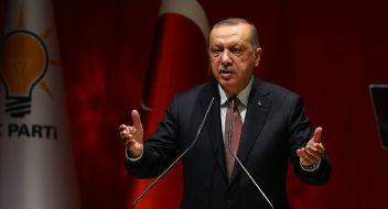 Erdoğan makalesinde, Suud hükümetini işaret etti