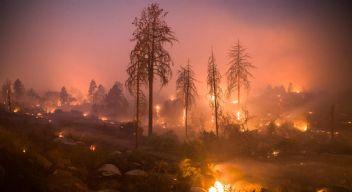 Kaliforniya'yı küle çeviren yangın tamamen kontrol altına alındı