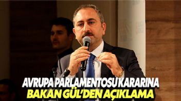 Bakan Gül'den Avrupa Parlamentosu kararına tepki