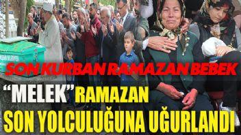 Son kurban 15 aylık Ramazan Bebek!