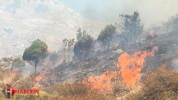 Marmara Adası'ndaki yangın yerleşim yerlerine ulaştı