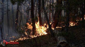 Eskişehir'de yangın kontrol altında!