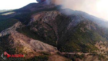 Milas'da orman yangını
